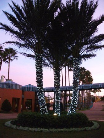 Walt Disney World Dolphin Resort: Loved this hotel for our Christmas visit to Disney World!