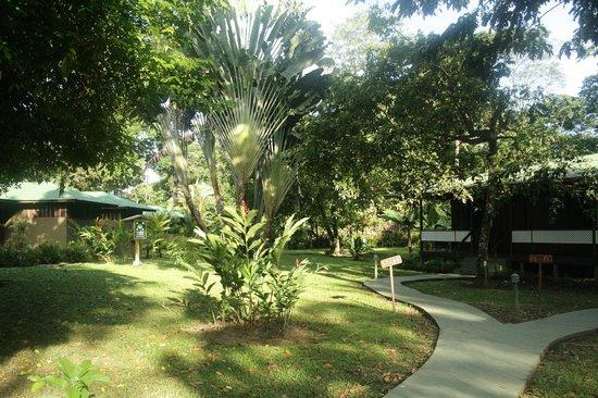 Mawamba Lodge: Tuin en verblijf
