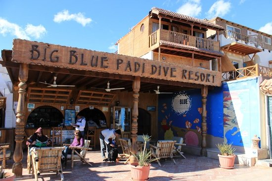 Big Blue Dahab : The place to look for: Big Blue, Dahab.