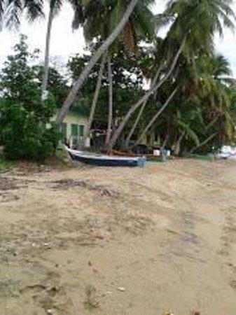 fishi g village next door