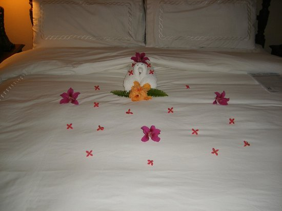 Sandals Royal Caribbean Resort and Private Island : Ellis/Andre's turn down one of the nights!