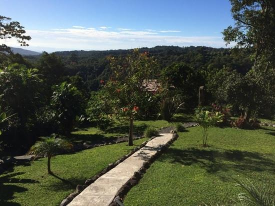 The Guest Suites at Manana Madera Coffee Estate : gorgeous view from our suite