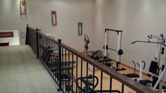 Hotel Estelar Windsor House: Gym
