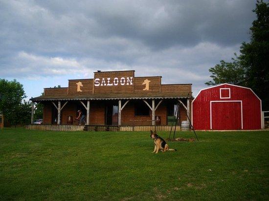 Labouquerie, France : Laboucario ranch
