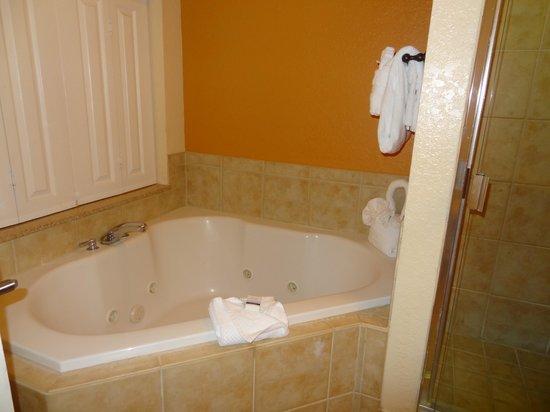 Floridays Resort Orlando: bathroom