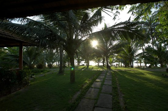 Thanh Kieu Beach Resort : The sea view