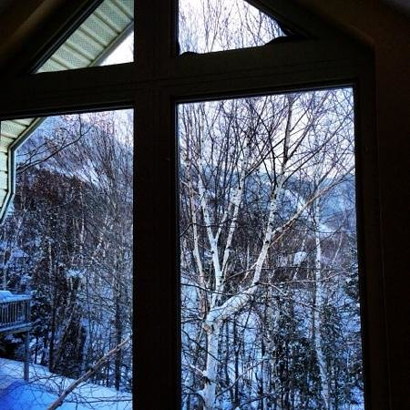 Marblewood Village Resort : Morning view of the hill from the back upstairs window.