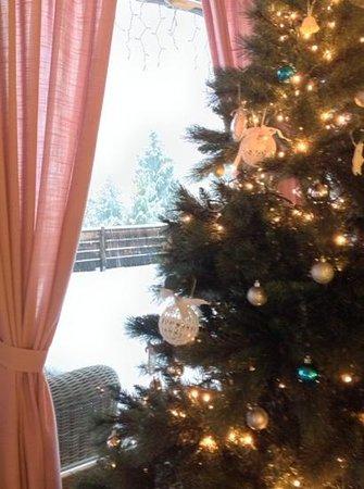 Hotel Carpe Diem: dicembre 2013