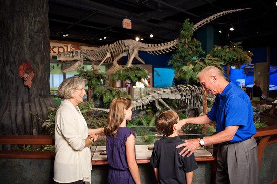 McWane Science Center: Family Fun for everyone!