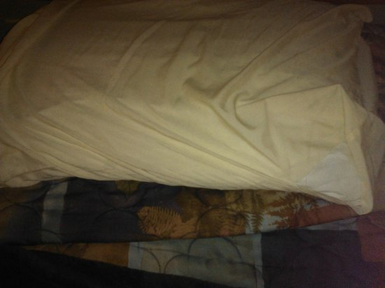 Super 8 Harrington : Torn Pillow Case left on bed REALLY!!!