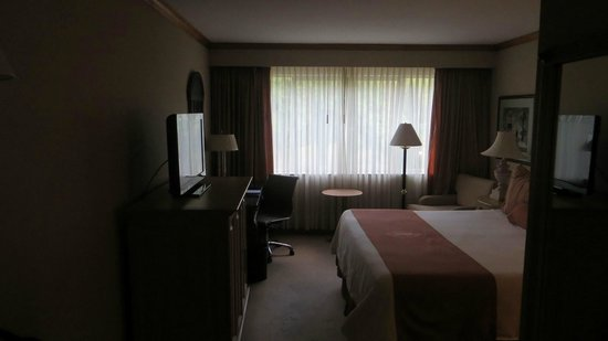 InterContinental Medellin : Single Room