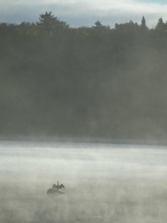 Tall Timber Lodge : early morning on one of the Connecticut Lakes