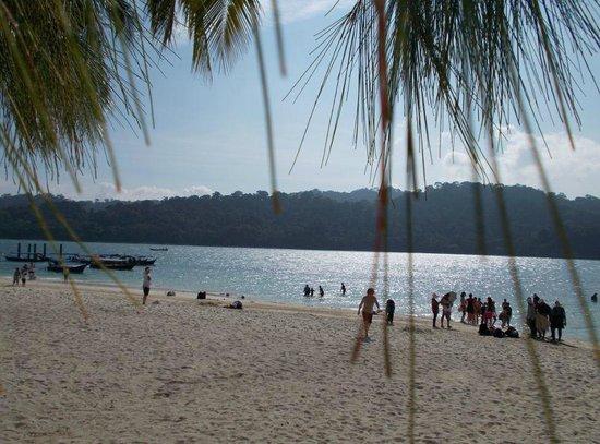 Beras Basah Island: Island View2