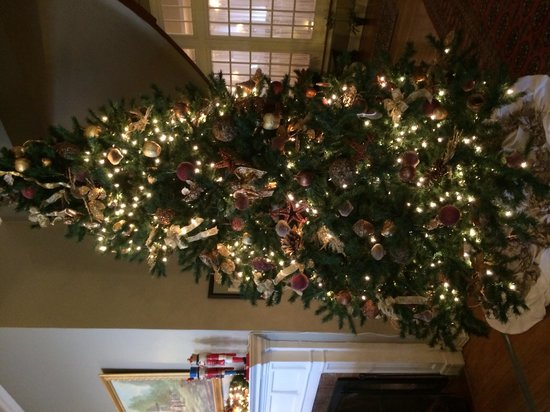 The Mimslyn Inn: Beautiful tree.