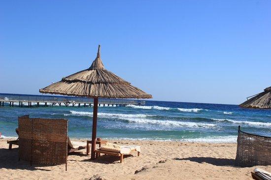 Siva Port Ghalib : spiaggia