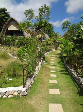 Milo's Home: view up to our lumbung and others