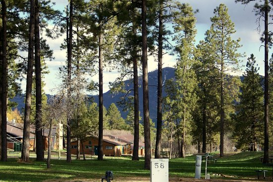 RV Park Camping - Picture of Echo Basin Cabin and RV Resort