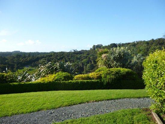 Matakana Country Lodge: One of the views.