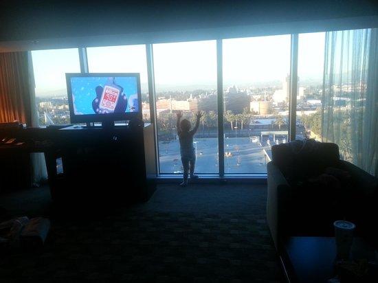 Hilton Anaheim : View