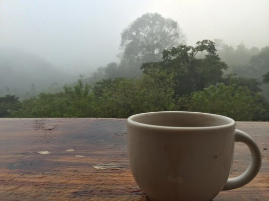 Utopia Eco Hotel: Enjoy a cup of coffee on a foggy morning