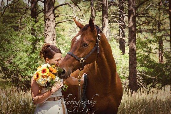Echo Basin Cabin and RV Resort: Wedding Portrait