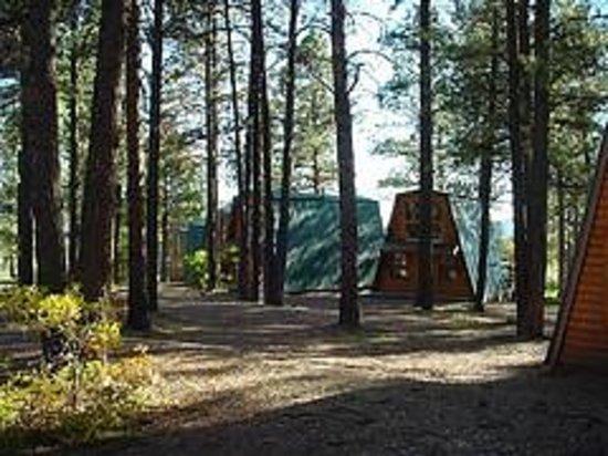 Echo Basin Cabin and RV Resort: Cabin Courtyard