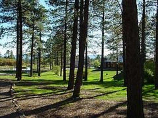 Echo Basin Ranch: Cabin Courtyard