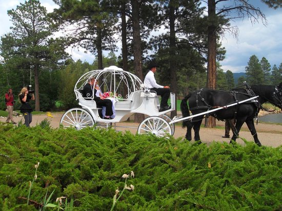Echo Basin Cabin and RV Resort: Horse & Carriage