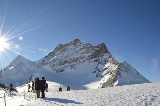 Jungfraujoch : ユングフラウ