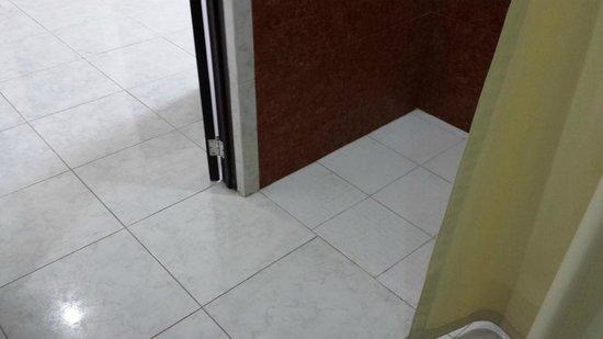 Holiday Inn Campeche: Mismo nivel de piso en el baño y habitacion
