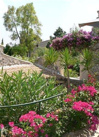 Can Furios Hotel : Garden