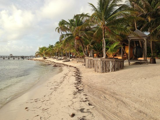 Matachica Resort & Spa : Matachica beach