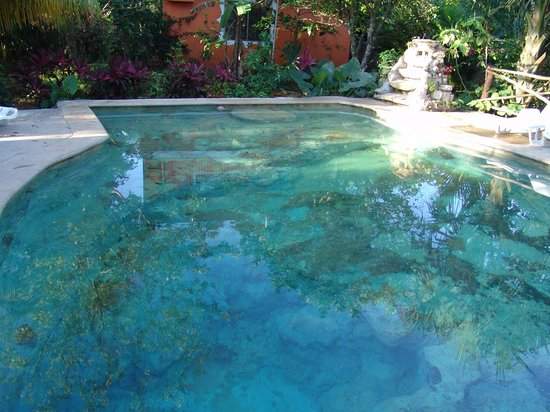 Hotel Macanche Bed & Breakfast: Pool to resemble a cenote