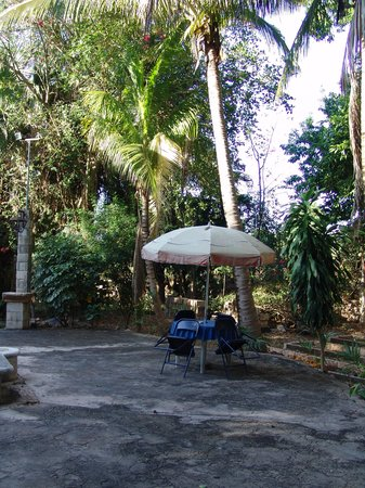 Posada el Jardin : Pool area