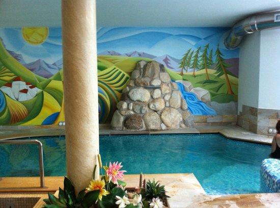 Centro benessere con piscina - Foto di Blumenhotel Belsoggiorno ...
