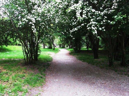 Arrowtown, Nueva Zelanda: Nice path