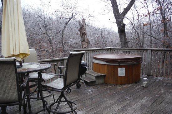 Pine Lodge Resort : Deck View-Woods View Cabin