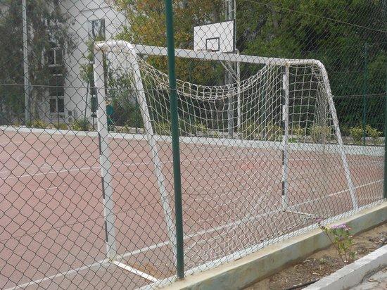 Hotel Laico Hammamet: terrain de sport