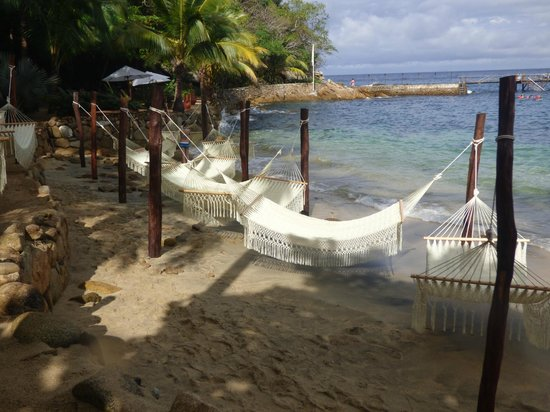 Vallarta Adventures - Las Caletas Beach Hideaway: Beach