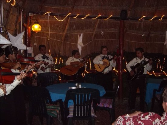 Turtle Bay Bakery & Cafe: Entertainment at Turtle Bay
