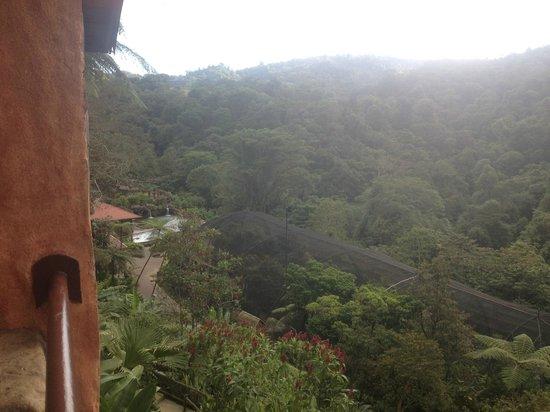 Peace Lodge : Room Balcony