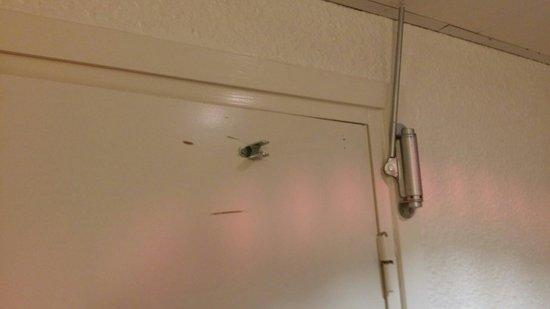 Ibis Paris 17 Clichy-Batignolles: Дверь в ванную