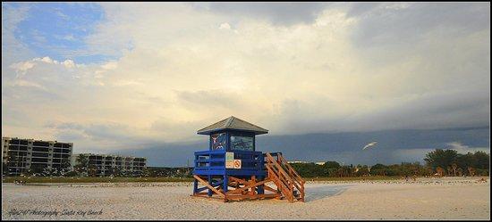 Siesta Beach: Siesta Key Beach Skyline