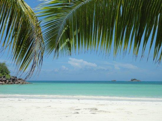 Paradise Sun: vue paradisiaque de mon transat