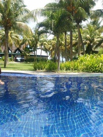 Paradise Sun: La vue depuis la piscine