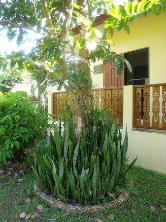 Mai Siam Resort: Bungalow