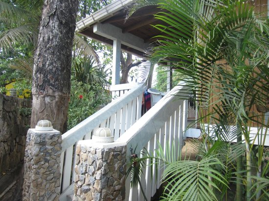 Coconut Tree West Bay: Stairs to our cabin
