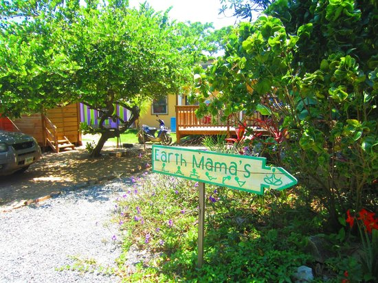 Earth Mama's Garden Cafe & Lifestyle: Earth Mamas