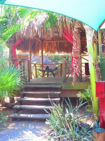 Earth Mama's Garden Cafe & Lifestyle: Yoga