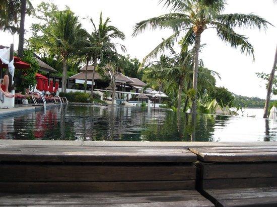 Anantara Lawana Koh Samui Resort : Infinity pool